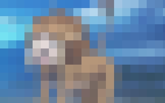 092001.jpg
